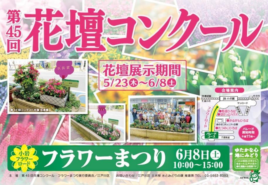 【江戸川区】区長賞はどの花壇チームの手中に!??明日6/8フラワーまつり開催です。